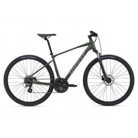 Bicicleta GIANT Roam 4 Disc 2021 Moss Green